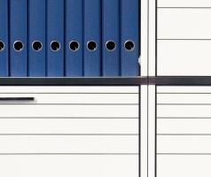 Palmberg Compona detailfoto